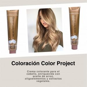 Coloración Color Project